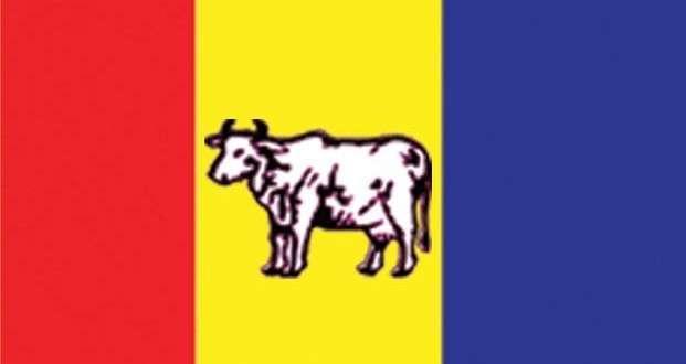 राप्रपा लाग्यो संगठन विस्तारमा